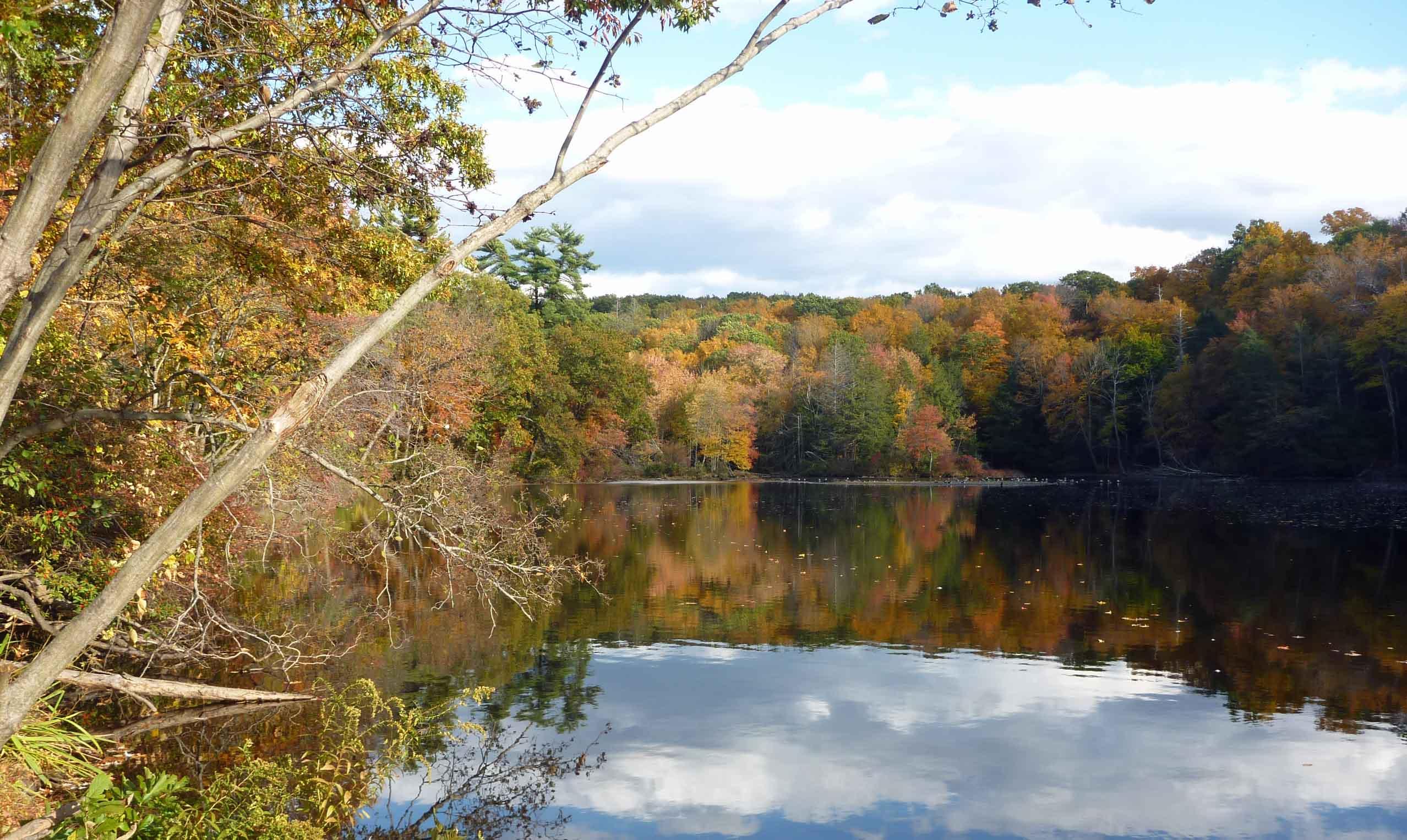 Gorge Pond