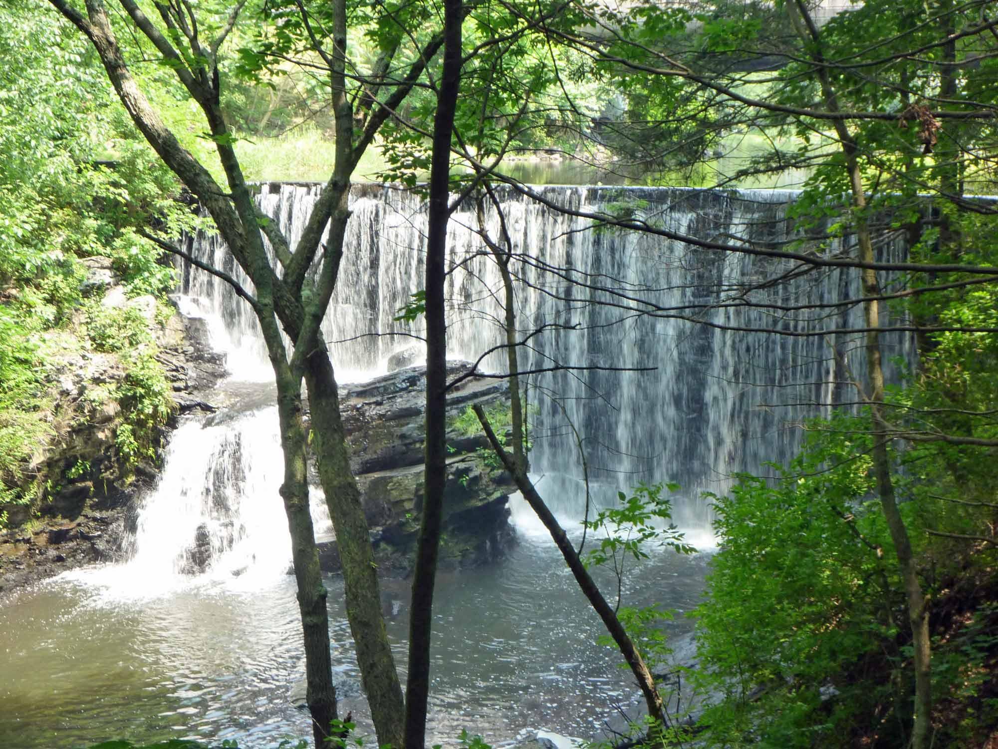 Ravine View Falls