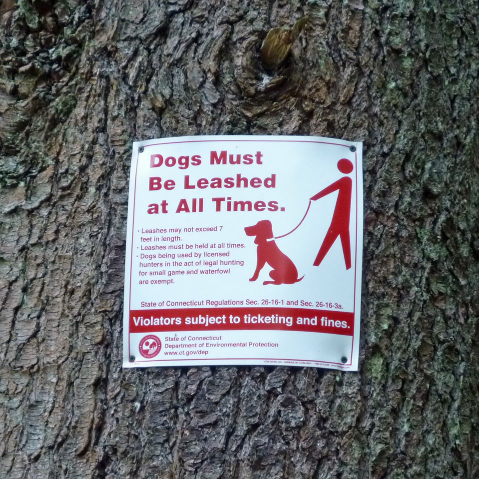 Dogs On Leash Sign